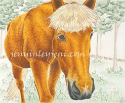 horse drawing giclee prints