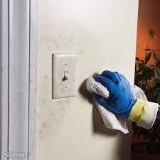 how to get a paint chip off the wall paint trim or walls first and other painting questions answered