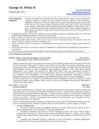 Resume Senior Sales Executive Security Analyst Resume Template