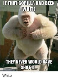 Gorilla Meme - white harambe harambe the gorilla know your meme