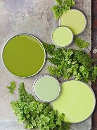 shades of green paint pantone 2017 color of the year greenery pantone greenery and pantone