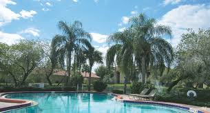 2 Bedroom Apartments Near Usf University Of South Florida At Tampa Apartments University Of