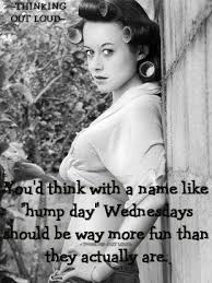 Wednesday Hump Day Meme - you d think with a name like hump day wednesday should be way more