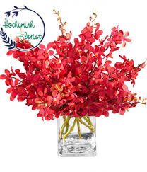 Red Orchids Send Orchids To Vietnam Online Ho Chi Minh Florist
