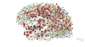 connecting the dots mapping the brain in a common form of autism