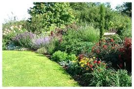 Garden Shrubs Ideas Border Landscape Ideas Border Shrubs Ideas Mreza Club
