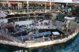 edmonton spotlight west edmonton mall