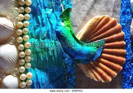 Assorted Seashells Stil Life Of Assorted Seashells Stock Photos U0026 Stil Life Of