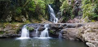 Gardeners Falls Maleny - 9 swimming holes to escape brisbane u0027s heat travel style magazines