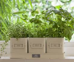 herb pots for windowsill valentine u0027s gifts for gardeners