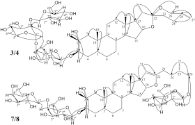 new epimeric spirostanol and furostanol type steroidal saponins