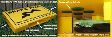 Where To Get House Blueprints What To Do If And How To Find A Snake In Your House