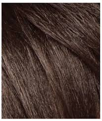 what color is sable hair color basic hair colors chart 2016 gabor loreal wella revlon garnier