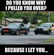 mustang car quotes 59 best cars cars cars images on mustang quotes