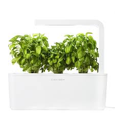 shop click and grow herb gardening kit at lowes com