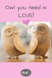 Duck Home Decor Owl You Need Is Owl Gift And Home Decor Accessories And