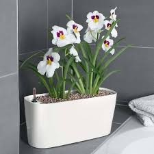 8 best indoor self watering planters for the black thumbed