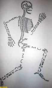 best 25 human body drawing ideas on pinterest anatomy drawing