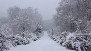 bentley college campus top 10 campus winter activities at conn her campus