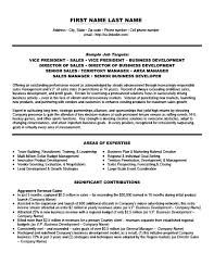 Expert Witness Resume Example by Vice President Of Sales Resume Template Premium Resume Samples