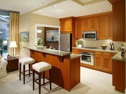 uncategorized kitchen small u shaped kitchen remodel plus wood