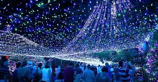 Crazy Christmas Light Show by Bucket List Things To Do In Vancouver To Make The Last Two Months