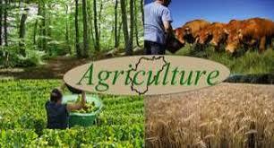 bureau d etude environnement bureau d etudes en agriculture environnement tizi ouzou draa ben