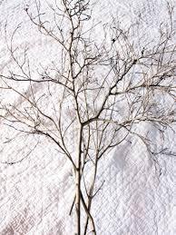 tree branch centerpiece thanksgiving tree centerpiece hgtv