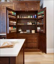 Pull Out Spice Rack Cabinet by Dining Room Fabulous Vintage Wooden Spice Rack Kitchen Sliding