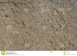 Concrete Texture Rough Concrete Texture Stock Photo Image 82076374