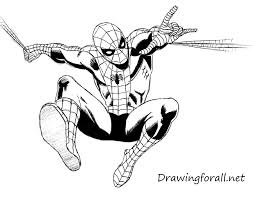 how to draw the amazing spider man drawingforall net