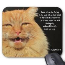 Meme Mouse Pad - meme cat mouse pads zazzle com au