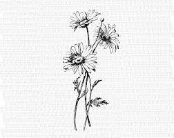 best 25 daisies tattoo ideas on pinterest flower tattoos