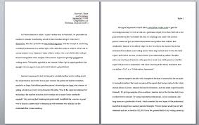 essay format double spaced typed essay format daway dabrowa co