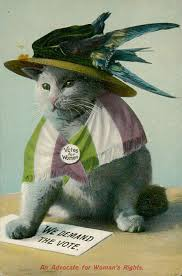Cat Meme Ladies - woman as cat in anti suffrage propaganda sociological images