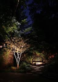 light your landscape for drama and function
