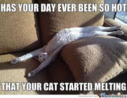 Melting Meme - melting memes best collection of funny melting pictures