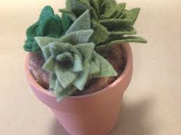tutorial tuesday mini felt succulents mommy like whoa