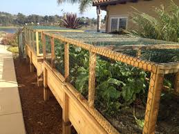 raised garden bed with hinged wire cover to keep critters edible