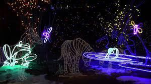 denver zoo lights hours denver zoo lights 2013 youtube