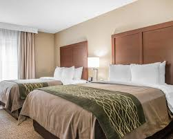 Comfort Inn In Pittsburgh Pa Comfort Inn U0026 Suites Pittsburgh Pa Booking Com