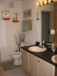 Simple Apartment Decorating Ideas by Ideas For Decorating Bathrooms Bathroom Decor Crafty Ideas Simple