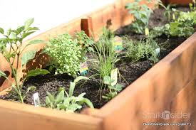 vegetable planter box turned herb garden julie writes in with