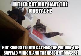 Mustache Cat Meme - hitler cat may have the mustache but snaggletooth cat has the podium