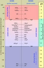 conjugate acid base pairs worksheet free worksheets library