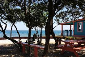 belize airbnb check out this awesome listing on airbnb bird island placencia