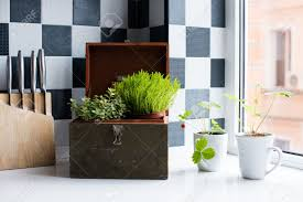 Home Plant Decor by Kitchen Utensils Decor And Kitchenware In The Modern Kitchen