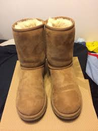 ugg boots for sale size 5 uggs size 5 chesnut fashion