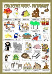 english exercises collective nouns