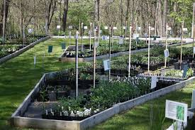 wholesale native plant nursery meadowood native plant nursery standingoutinmyfield